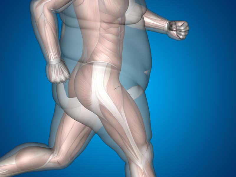 Grasa abdominal como predictor de los Problemas de Erección Boston Medical Group España