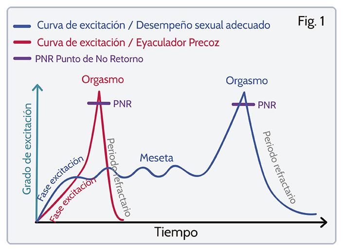 Curva de excitacion, eyaculcion precoz